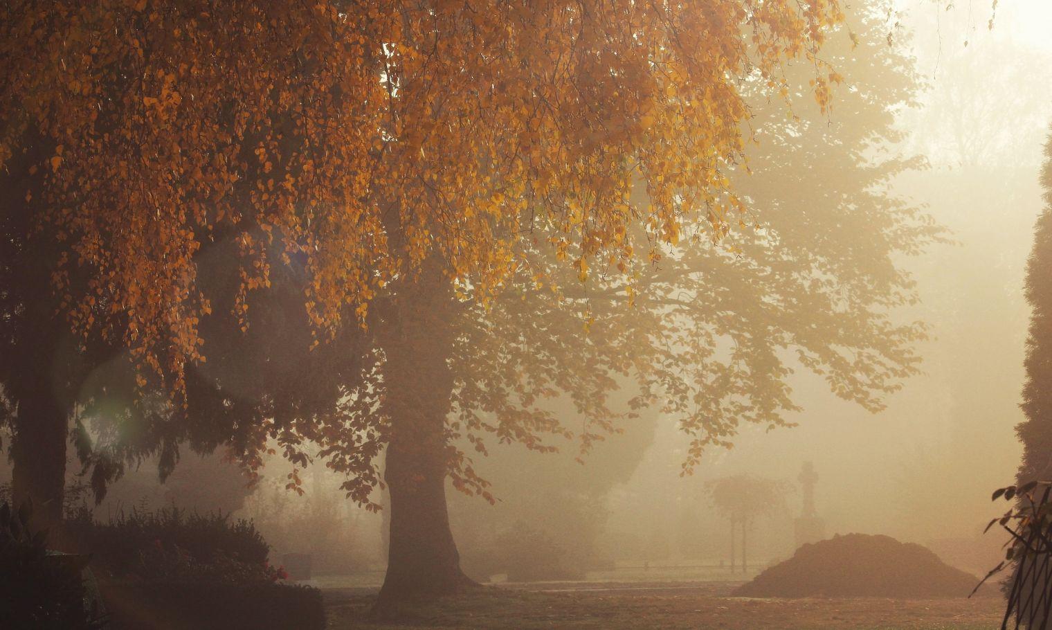 Ein spiritueller Spaziergang auf dem Hauptfriedhof